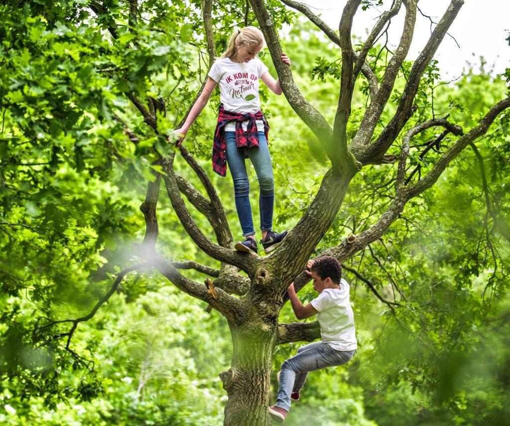 Steenbergerpark is leukste plekje van Drenthe